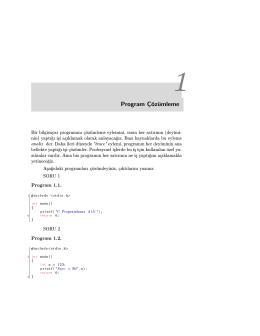 Program Çözümleme