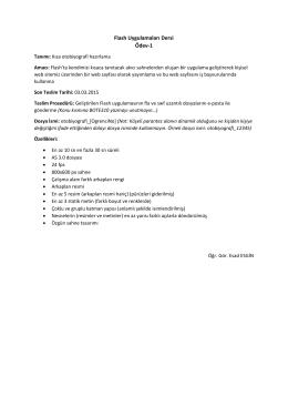 Flash Uygulamaları Dersi Ödev-1