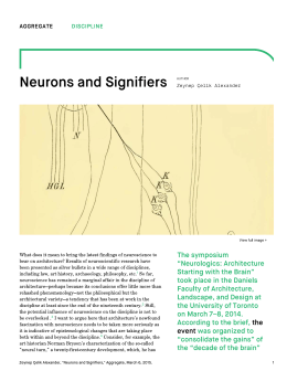 Aggregate – Neurons and Signifiers