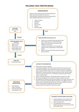 influenza vaka yönetim şeması
