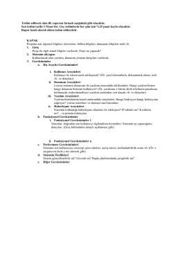 Teslim edilecek olan ilk raporun formatı aşağıdaki gibi olacaktır. Son