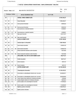 Bütçe Giderlerinin Fonksiyonel Sınıflandırılması Tablosu