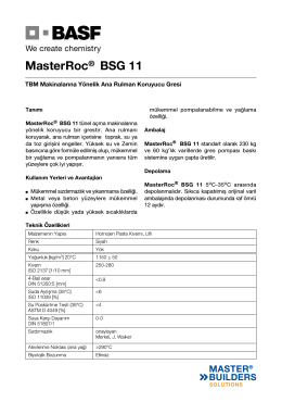 MasterRoc® BSG 11
