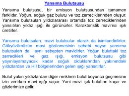 YAM_2015_05