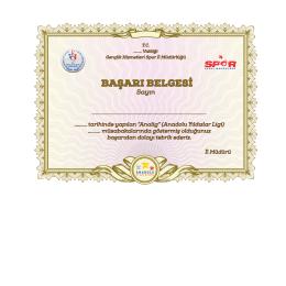 Başarı Belgesi - Spor Genel Müdürlüğü