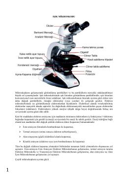 IŞIK MİKROSKOBU Mikroskopların gelişmesinde görüntüleme