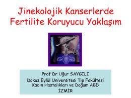 Prof. Dr. Uğur Saygılı
