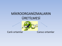 mikroorganizmaların üretilmesi
