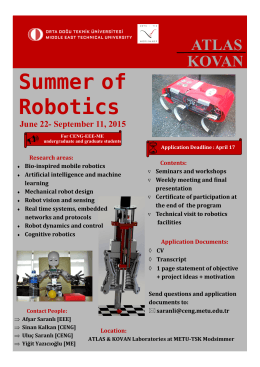 Summer of Robotics
