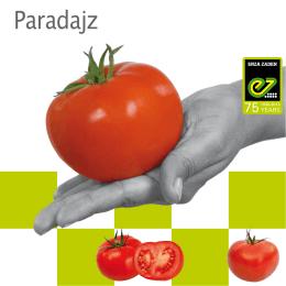 Paradajz - Enza Zaden