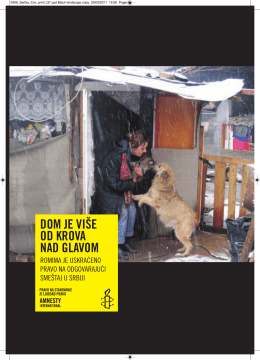 Amnesty International Report.pdf