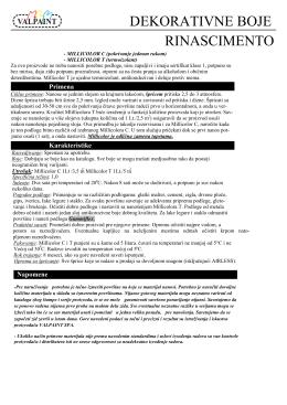 RINASCIMENTO pdf, 101KB