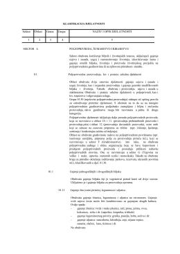 Sektor Oblast Grana Grupa NAZIV I OPIS