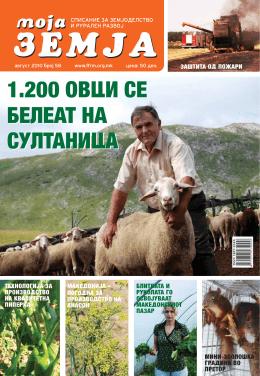 1.200 ovci se beleat na sultanica 1.200 ovci se beleat na sultanica