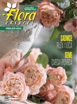 NOVO - Floraekspres