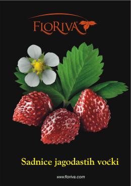 Katalog sadnica PDF