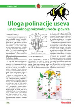 Pogledaj PDF