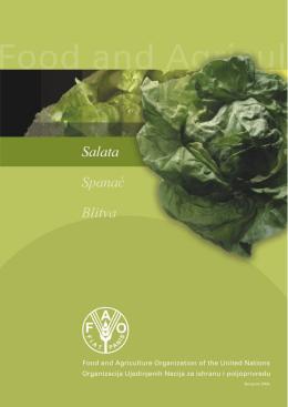 salata,blitva