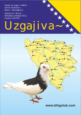 Novine uzgajivač Br.6 - Savez za uzgoj i zaštitu sitnih životinja u