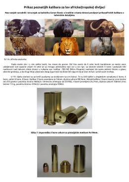 Prikazkalibarazalovafrickedivljaci.pdf