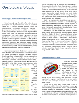 Mikrobiologija NS.pdf