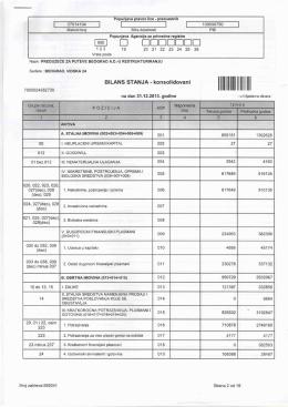 Finansijski izveštaj za 2013. godinu
