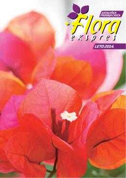 LETO 2014. - Floraekspres