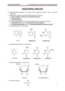 nukleinske kiseline - Zrenjaninska gimnazija