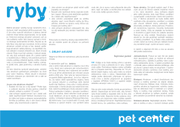 Ryby - Pet Center