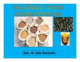 doc. dr Jela Ikanović