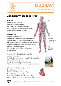 Jak nám v těle teče krev