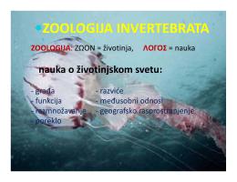 ZOOLOGIJA INVERTEBRATA