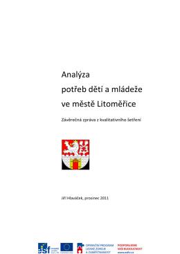 Analýza potřeb dětí a mládeže ve městě Litoměřice