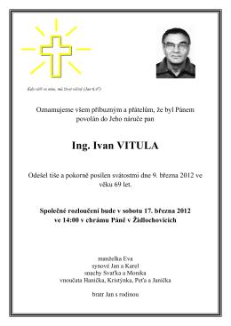 Ing. Ivan VITULA