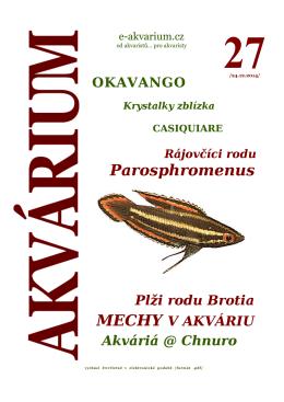 Parosphromenus - e