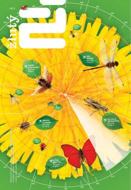 Časopis Žlutý