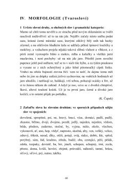 IV. MORFOLOGIE (Tvarosloví)