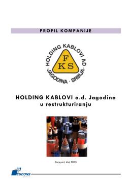 PROFIL KOMPANIJE HOLDING KABLOVI ad Jagodina u