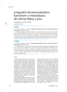 Linguální skvamocelulární karcinom s metastázou do slinné žlázy u