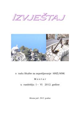 Izvještaji o radu od I do VI.2012