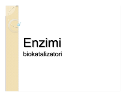 Enzimi - Biolozi 2011/12