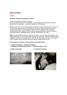 Kožni problemi pasa i macaka prac´eni svrabom.pdf