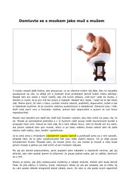 Stáhni si PDF verzi