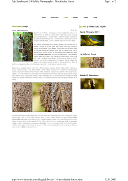 Page 1 of 2 Petr Bambousek | Wildlife Photography