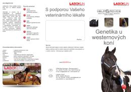 Genetika u westernových koní