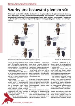 Vzorky protestování plemen včel