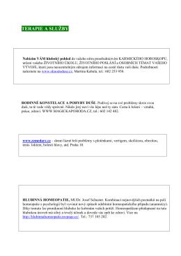 WEB_č 3 13 _Terapie_a_služby doc