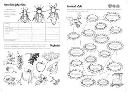 Opylování Zmatená včela