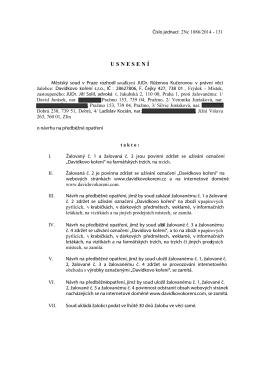 usnesení o návrhu na předběžné opatření