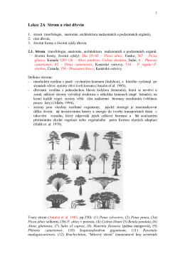 Lekce 2a (pdf)